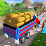 Cargo Indian Truck 3D 1.0 (Mod)