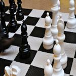 Chess Titans 3D: free offline game 17.1 (Mod)