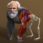 Idle Evolution – from Cell to Human 1.5 (Mod)