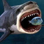 King of the Fish Tank: It's a fish eat fish world 1.2.7 (Mod)