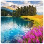 Landscape Puzzle Jigsaw 1.0 (Mod)