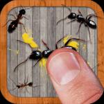 Ant Smasher  9.80 (Mod)