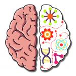 Brain Crazy: IQ Challenge Puzzle 1.2020052002 (Mod)