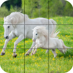 Puzzle – Beautiful Horses 1.24 (Mod)