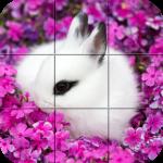 Puzzle – Cute bunnies 1.28 (Mod)