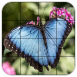 Tile Puzzles · Butterflies 1.44.bf (Mod)