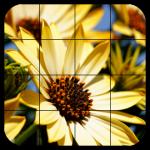 Tile Puzzles · Flowers 1.44.fl (Mod)