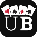 Ultimate Bridge 3.3.6 (Mod)