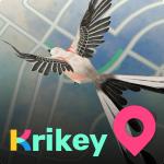 Krikey 2.9.0 (Mod)