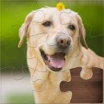 Life Jigsaw Puzzles 1.1.8 (Mod)