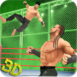 Tag Team Wrestling Superstars Fight: Hell In Cell  1.1.3 (Mod)