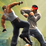 Big Fighting Game 1.1.4 (Mod)