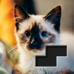 Block Square Jigsaw Puzzle 1.0.8  (Mod)