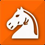 Follow Chess 3.6.12 (Mod)
