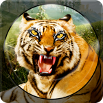 Forest Animal Hunting 2018 – 3D  1.2.4 (Mod)