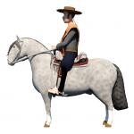 Rodeo Chileno 1.1.8.13 · JuVi SpA(Mod)