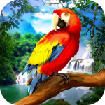 🐦 Wild Parrot Survival – jungle bird simulator! 1.2.3(Mod)