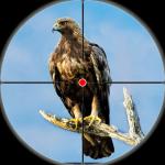 Desert Birds Sniper Shooter – Bird Hunting 2019 4.0 (Mod)