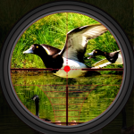 Duck Hunting 2019 – Real Wild Adventure Shooting 1.0 (Mod)