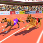 Dog Race Sim 2019: Dog Racing Games 7.1.4 (Mod)
