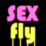 Sex Flying Control 8.1 (Mod)