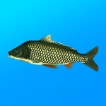 True Fishing. Fishing simulator  1.14.3.666 (Mod)