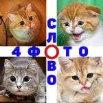 4 Фото 1 Слово. Где логика? Угадай слово. 1.53 (Mod)