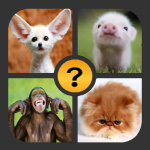 4 Pics 1 Word – Games 2019 2.0.3(Mod)