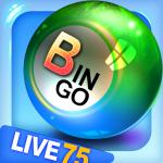 Bingo City 75: Free Bingo & Vegas Slots  12.92 (Mod)