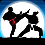 Karate Fighter : Real battles  19 (Mod)