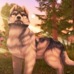 Wolf Tales – Online Wild Animal Sim  200198 (Mod)