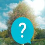 Bridgerton TV Show Unofficial Trivia 1.3 (Mod)