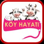 Çiftlik Hayatı – Para Kazan 9 (Mod)