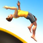 Flip Master  2.2.0 (Mod)