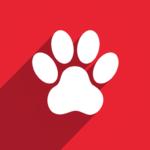 Watch Pet Adopt & Raise a Cute Virtual Widget Pet  1.0.16 (Mod)