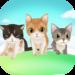 My Talking Kitten 1.2.6 (Mod)