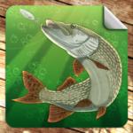 Мобильная русская рыбалка  (Mod)