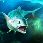 TAP SPORTS Fishing Game  (Mod)
