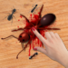 Ant Smasher Game  (Mod)