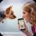 Dog Language Translator Simulator – Talk to Pet  (Mod)