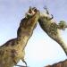 Jurassic Epic Dinosaur Battle Simulator Dino World  (Mod)