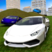 Multiplayer Driving Simulator  (Mod)