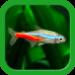 Tropical Fish Tank – Mini Aqua  (Mod)