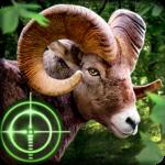 Wild Hunter 3D  (Mod)