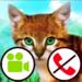 fake call video cat game  (Mod)