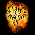 Darkness and Flame (free to play)  2.0.1.937.69 (Mod)
