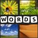 4 Pics 1 Word – 2021 New  (Mod)