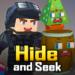 Hide and Seek  (Mod)