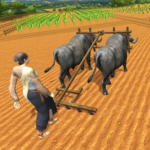 Village Plow bull Farming  (Mod)